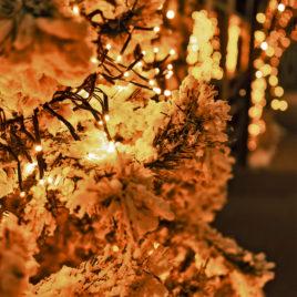 Cluster 3m ljusslinga